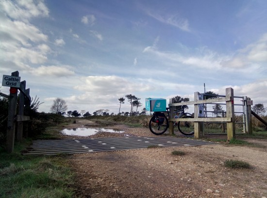 Landscape and bike Bournemouth heathland a